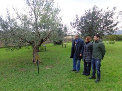 b_0_0_0_00_images_phocagallery_zingales._romano._tuttoilmondo_al_giardino_.jpg